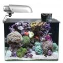 Akwarium Aquatic Nature Aquarium Cocoon7 45x30x32cm (43l)