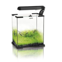 Zestaw Akwariowy Aquael Shrimp Set 10 - 20x20x25cm (10l)